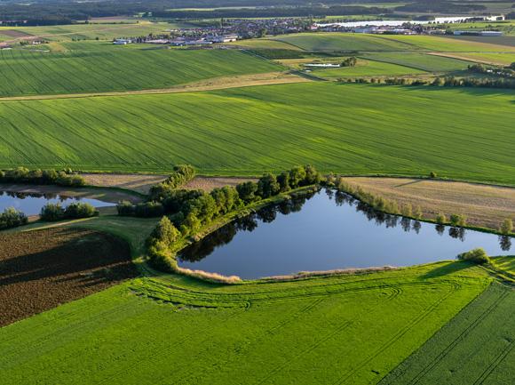 zones humides, prairies inondables